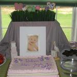 Baby Shower Dessert Table with Butterfly Cookies